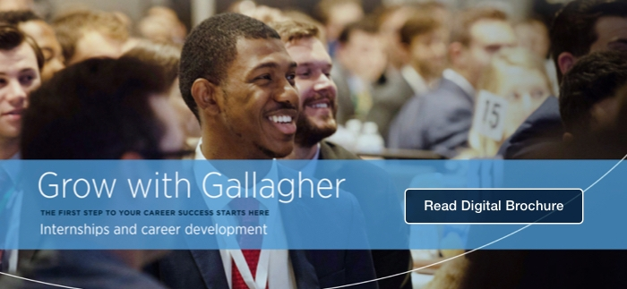 Gallagher Internship Digital Brochure